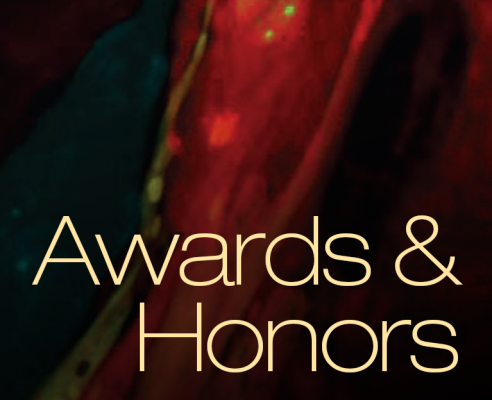 Awards & Honors graphic