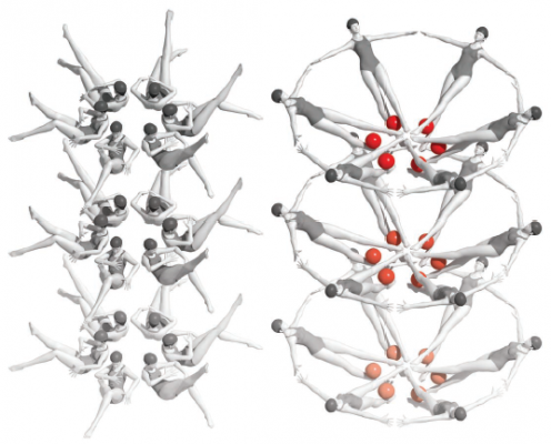 riboswitch RNA molecules rearrange themselves into a new crystal form