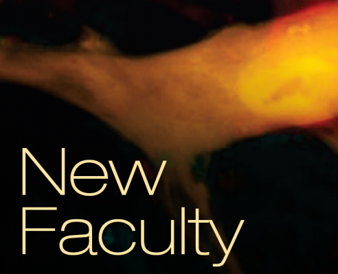 New Faculty graphic