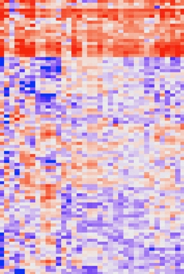 Heat map graph shows the gene expression profiles of over 11,000 different tumors