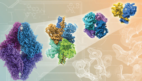 Rapid advances in cryo-EM technology (left to right) show improving resolutions in atomic detail of proteins and drug bindi