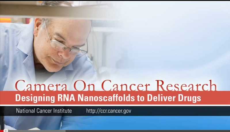 link to Designing RNA Nanoscaffolds to Deliver Drugs video
