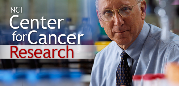 link to about CCR - general information about the NCI Center for Cancer Research