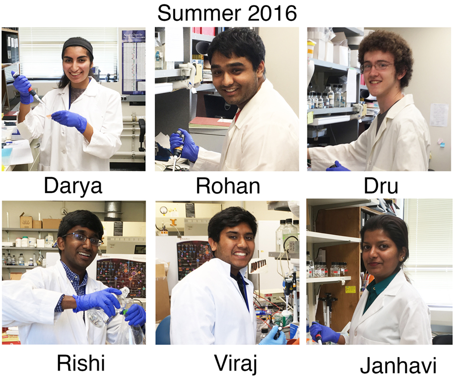 Acharya Lab - Summer 2016