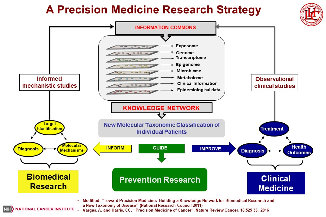 A Precision Medicine Research Strategy - flow chart showing how biomedical, prevention and clinical research contribute to the knowledge network for precision medicine