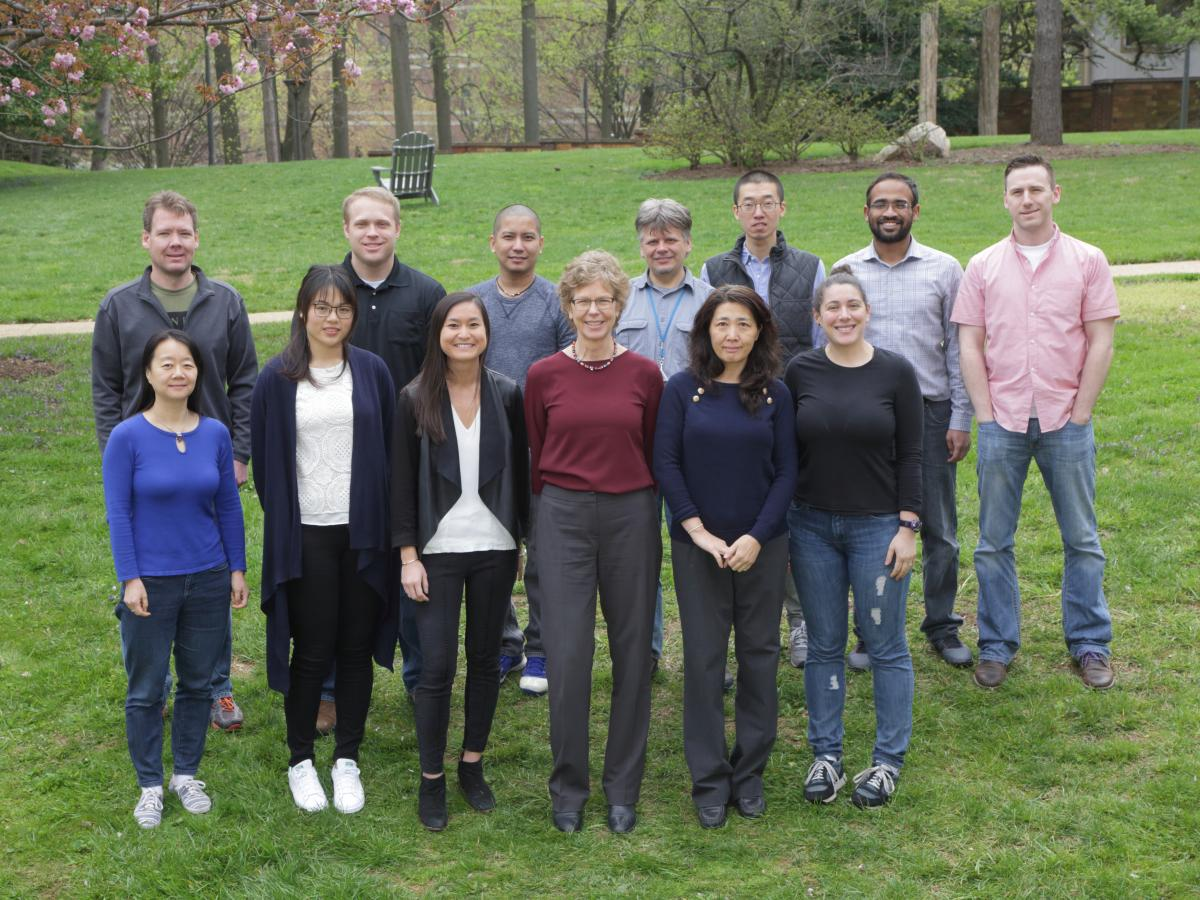 Kelly Lab Photo