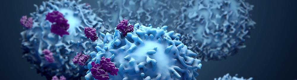 3d illustration of proteins with lymphocytes, t cells, or cancer cells