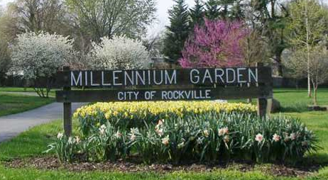 millennium garden in rockville maryland