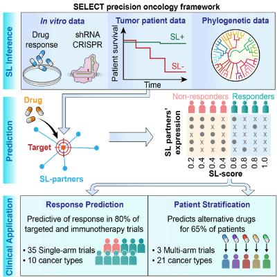 SELECT precision oncology framework
