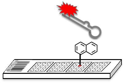 A small molecule microarray screen