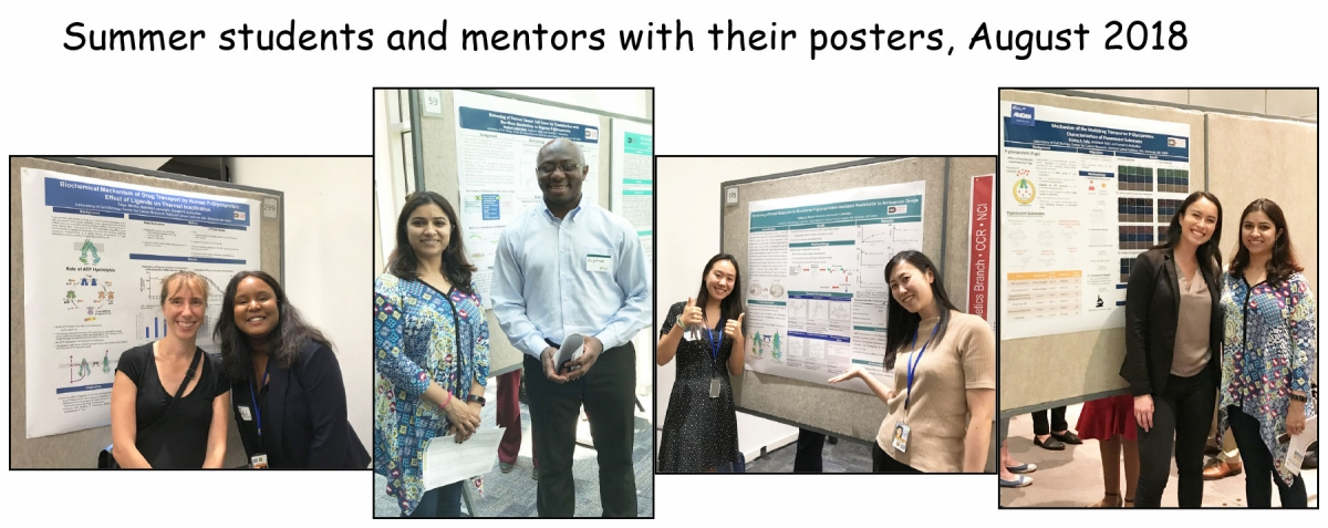 Summer students with their mentors and posters, 2018